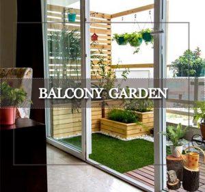 Balcony Garden Delhi Gurgaon Noida ©MNC