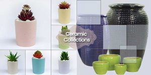 Ceramic Planters Collection ©MNC