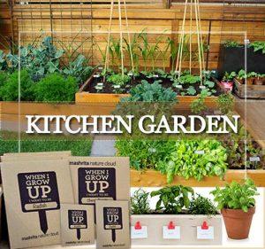 Kitchen Garden Delhi Gurgaon Noida ©MNC