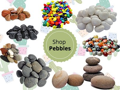 Shop Pebbles Online Gurgaon Delhi Noida ©MNC