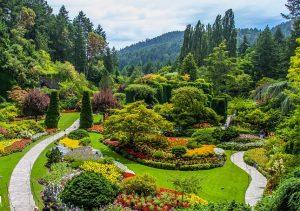 Gardening - Mashrita -Online Wholesale Nursery