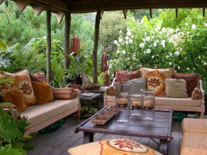 Small Space Gardening- Mashrita -Online Wholesale Nursery