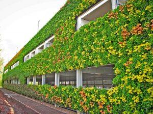 Corporate Outdoor Vertical Garden