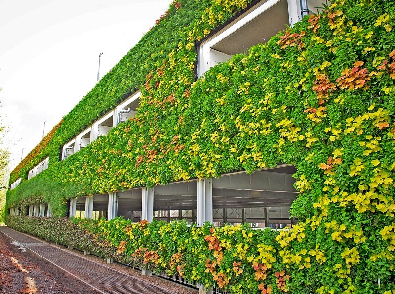 Corporate Outdoor Vertical Garden