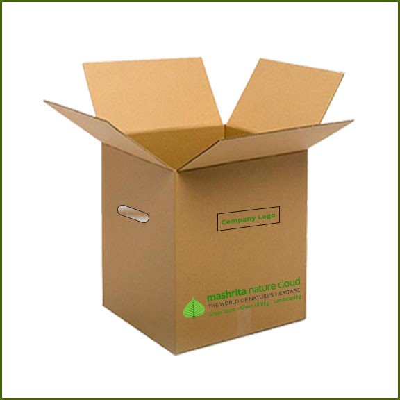 Corporate Plant Gifting - Corporate Green Gifts - Packaging Box