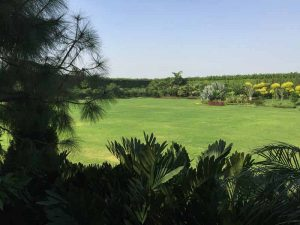 Farmhouse Landscapeing Gurgaon