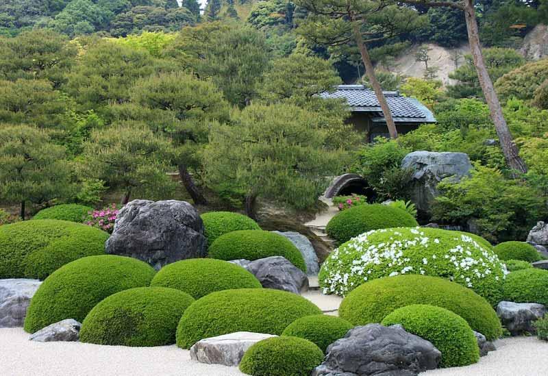 Japanese Concept Garden