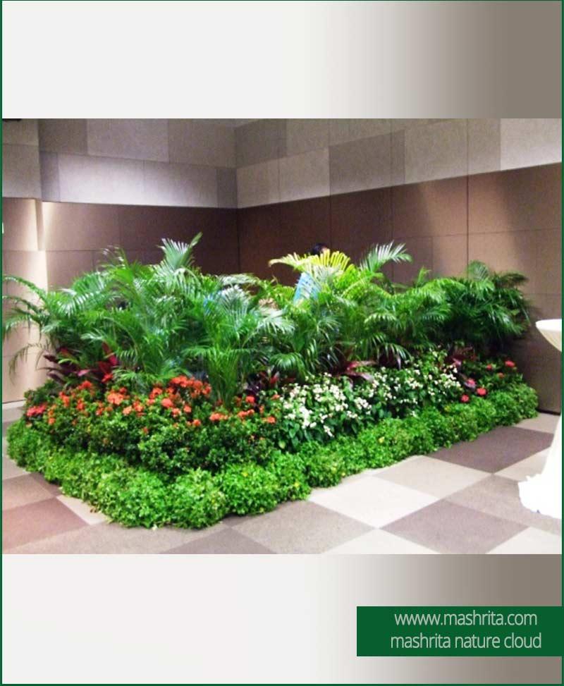 Event Plant Rentals