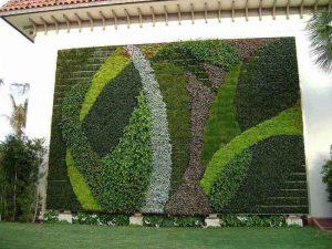 Vertical Garden India