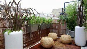 Balcony Garden Delhi