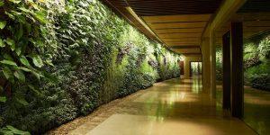 corporate vertical garden