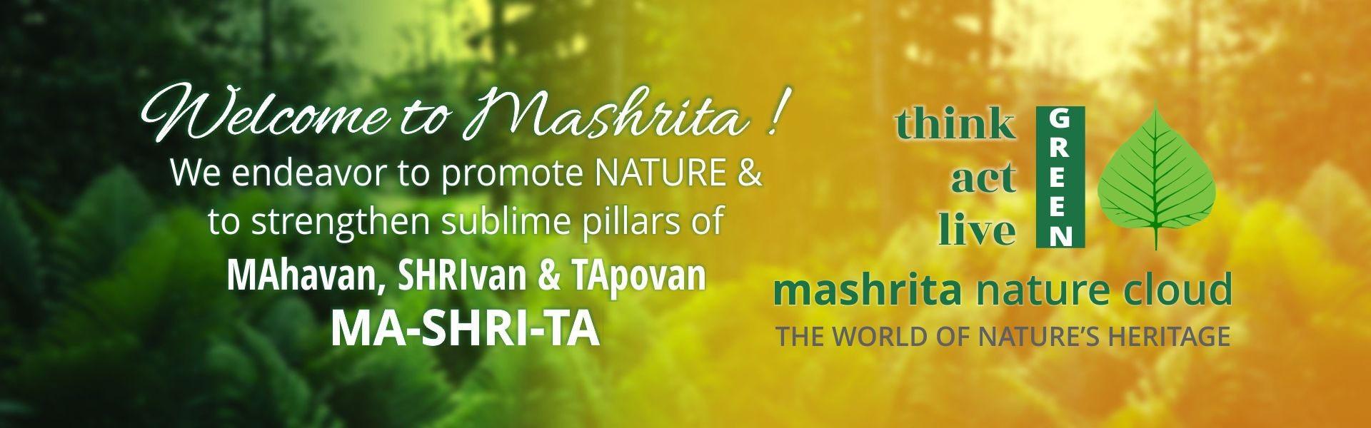 About Mashrita.com