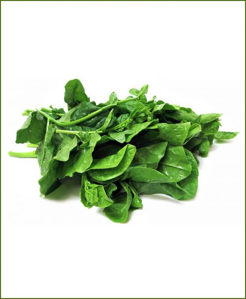 Poi-Patta-(Malabar-Spinach)_Mashrita_Nature_Cloud