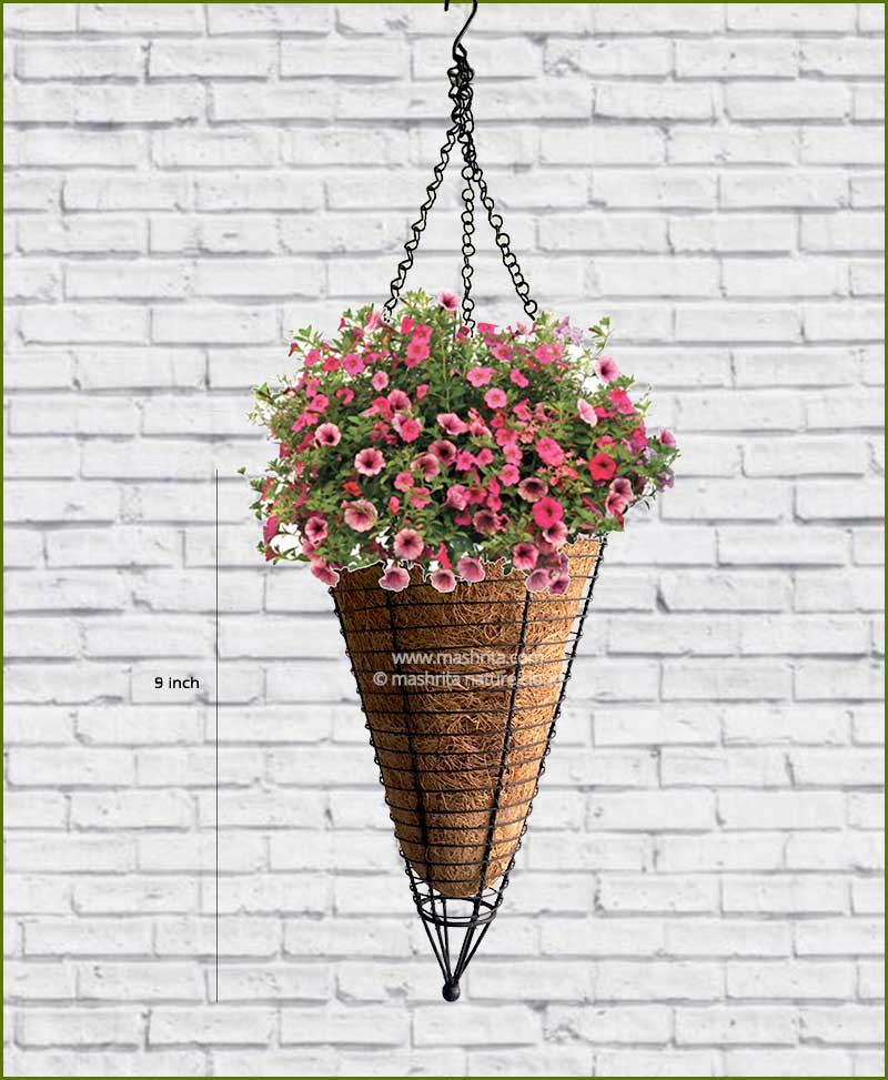 Buy Coir Conical Hanger Pot 9 inch