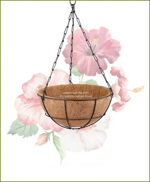 Coir Hanging Basket with Hanger 10 inch