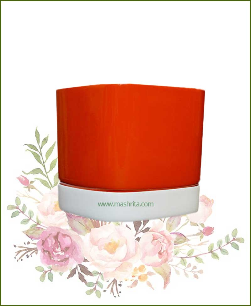 Fiberglass-Planter-Orange-with-White-Plate-(Large)_Mashrita_Nature_Cloud