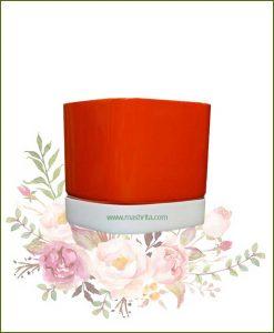 Fiberglass-Planter-Orange-with-White-Plate-(Medium)_Mashrita_Nature_Cloud