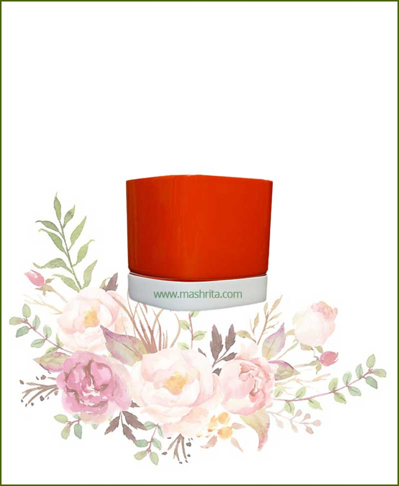 Fiberglass-Planter-Orange-with-White-Plate-(Small)_Mashrita_Nature_Cloud