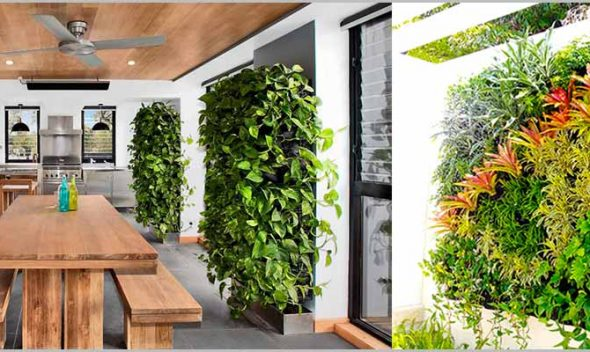 Best Indoor Vertical Garden Plants for Delhi NCR