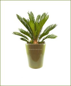 Ceramic-Glazed-Planter-Olive-10inch