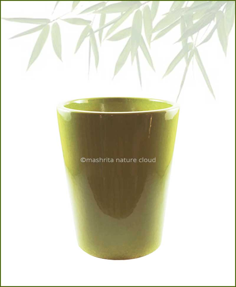 Ceramic-Glazed-Planter-Olive-(12-Inch)