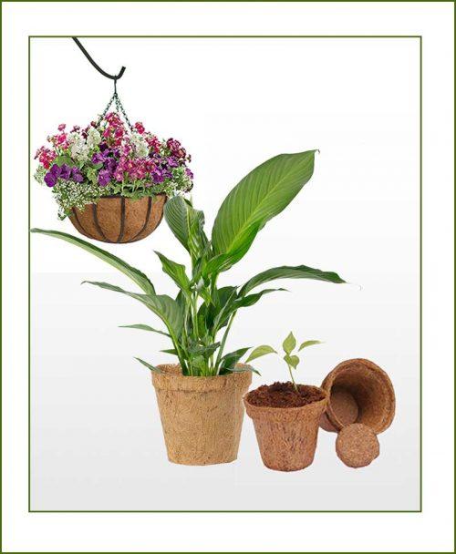 Coir Pots & Planters