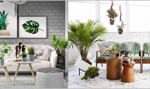 Planning Indoor Plantscaping – Indoor Plantscaping Design Considerations