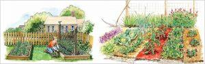 Planning Kitchen Garden – Kitchen Garden Design Considerations