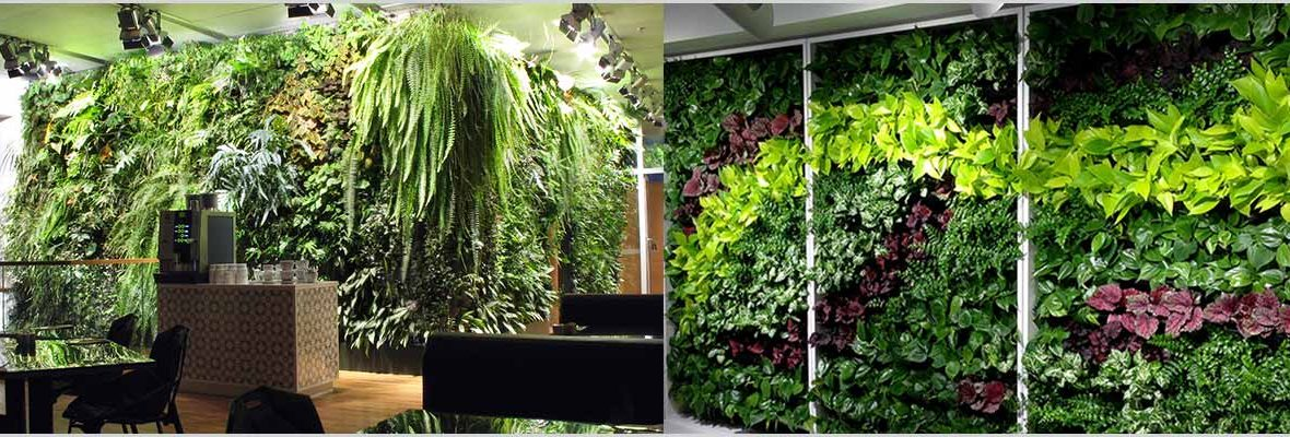 Planning Vertical Garden - Vertical Garden Design Considerations