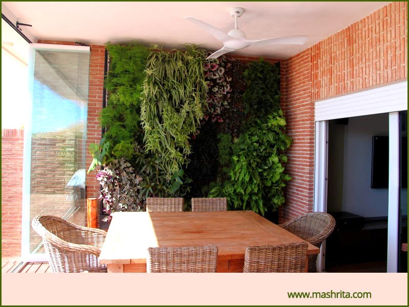 Vertical Garden Green Wall India