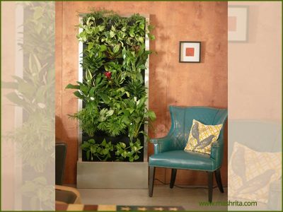 Vertical Garden Gurgaon