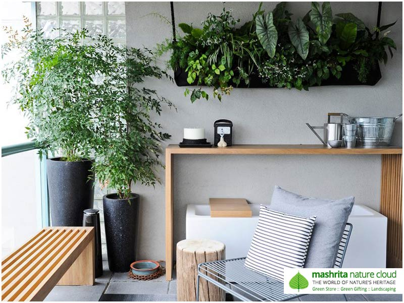 Indoor Plantscaping Services
