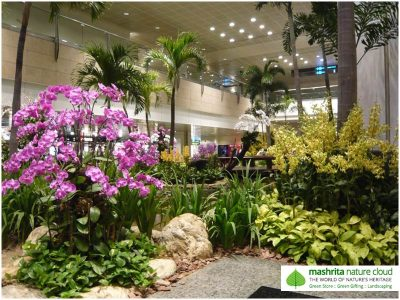 Indoor Plantscaping Gurgaon