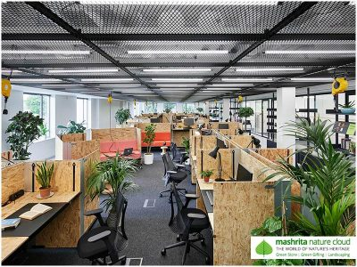 Plantscaping Office