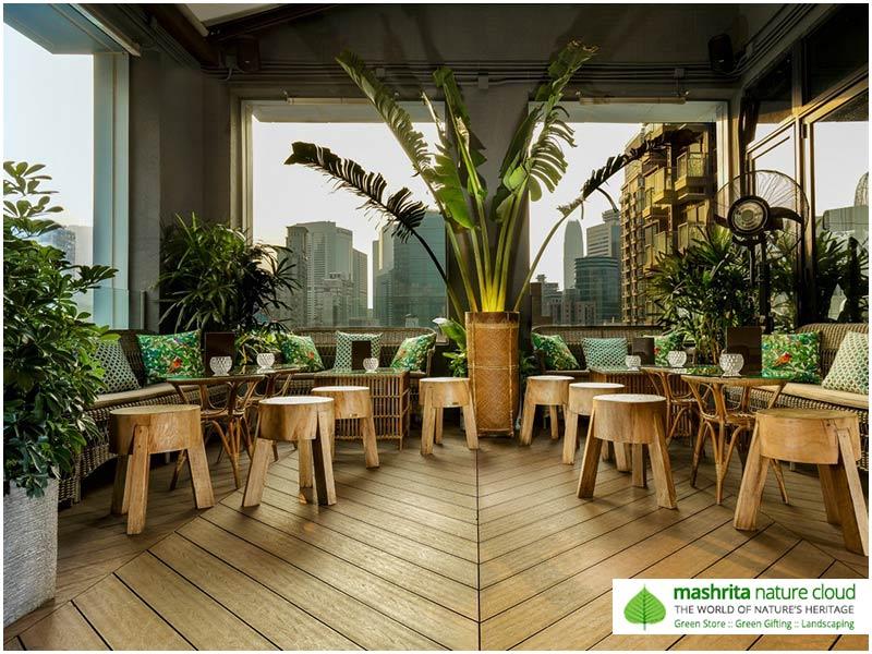 Indoor Plantscaping Waiting Area Restaurant