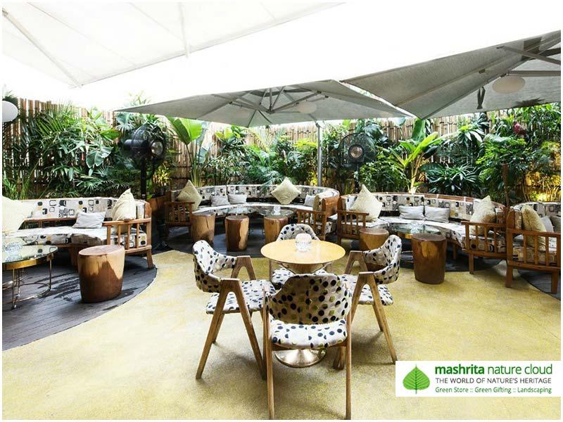 Roof Garden Noida