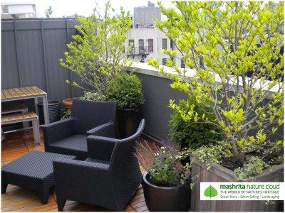 Terrace Garden Apartments