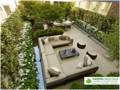 Terrace Garden Delhi