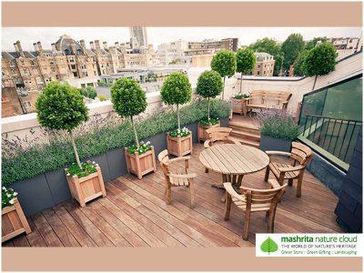 Terrace Garden Duplex House