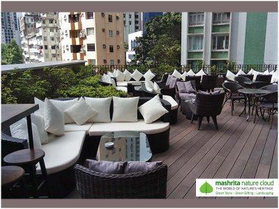 Terrace Garden Faridabad