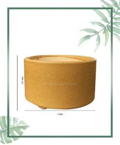 Ceramic Bonsai Tray Planter - Mustard Round 7 inch