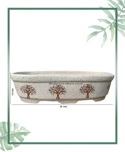 Ceramic Bonsai Tray Planter - White Color Compact Oval Shape 20 inch