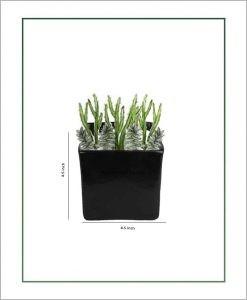 Ceramic Square Table Top Planter Glazed Black (4.5-inch)