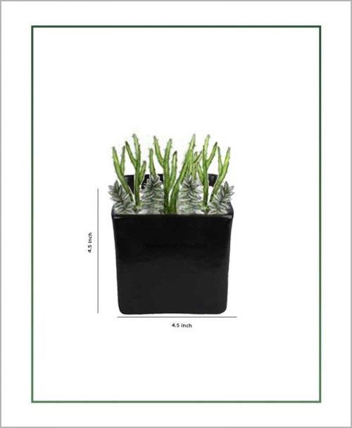 Ceramic Square Table Top Planter Glazed Black (4.5-inch)