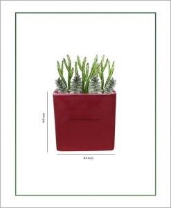 Ceramic Square Table Top Planter Glazed Maroon (4.5-inch)