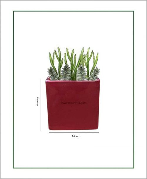 Ceramic Square Table Top Planter Glazed Maroon (4.5-inch)