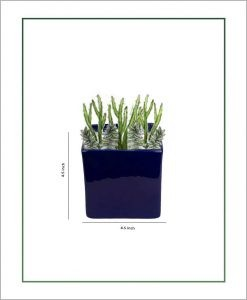 Ceramic Square Table Top Planter Glazed Navy Blue (4.5-inch)