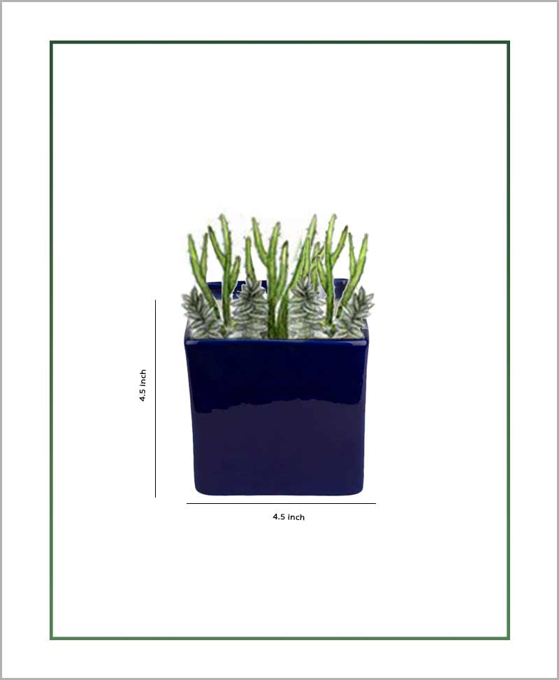 Ceramic Square Table Top Planter Glazed Navy Blue (4.5-inch)