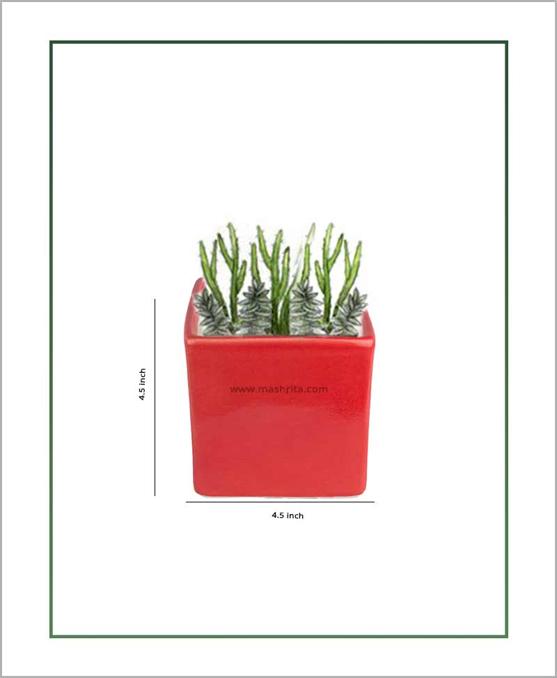 Ceramic Square Table Top Planter Glazed Red (4.5-inch)