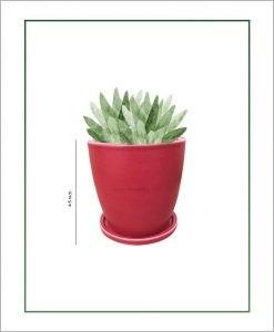 Ceramic Oval Table Top Pot with Tray Matt Maroon 4.5 inch